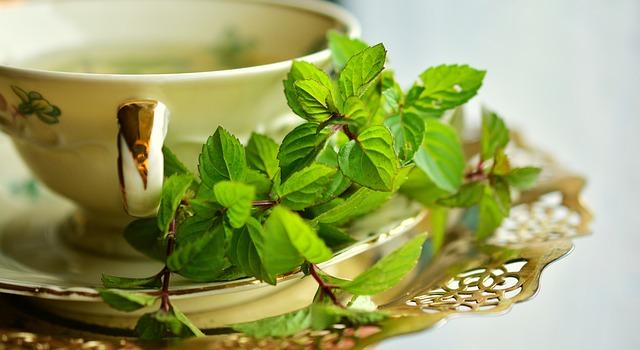 Zielona herbata w filiżance