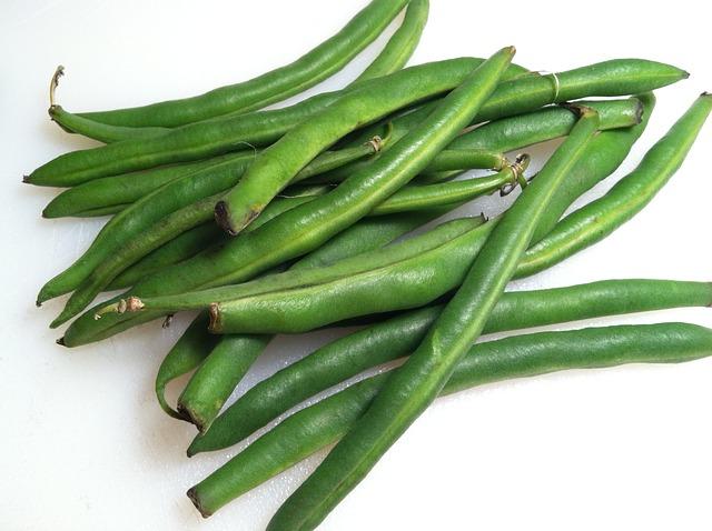 Zdrowa i zielona fasolka szparagowa